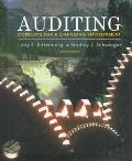 Auditing-text