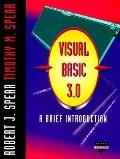 Visual Basic 3.0: A Brief Introduction (Dryden Exact)