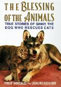 The Blessing of the Animals: More True Stories of Ginny, the Dog Who Rescues Cats