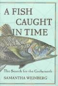 Fish Caught in Time