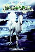Castaway Colt (Phantom Stallion Wild Horse Island Series #4)