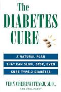 Diabetes Cure A Medical Approach That Can Slow, Stop, Even Cure Type 2 Diabetes