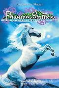 Snowfire (Phantom Stallion Wild Horse Island Series #9)