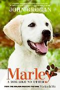 Marley Dog lLike No Other MTI
