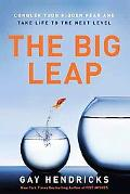 Big Leap: Conquer Your Fears and Take Life to the Next Level