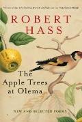 Apple Trees at Olema