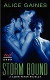 Storm Bound (Avon Romance)