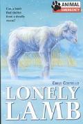 Lonely Lamb