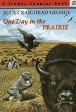 One Day in the Prairie (Trophy Chapter Book)