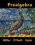 Loose Leaf Prealgebra