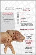 Anatomy & Physiology Revealed Student Access Card (Fetal Pig Version)