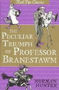 Peculiar Triumph of Professor Branestawm