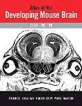 Atlas of the Developing Mouse Brain E17.5, P0 and P6