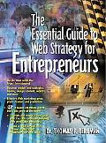 Essential Guide to Web Strategy for the Entrepreneurs