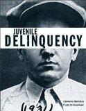 Juvenile Delinquency (Justice Series) Plus MyCrimeKit -- Access Card Package (The Justice Se...