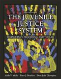 The Juvenile Justice System: Delinquency, Processing, and the Law (8th Edition)