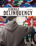 Juvenile Delinquency (2nd Edition)