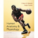 Instructor's Review Copy for Human Anatomy and Physiology (text Component)