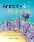 Anatomy & Physiology (6th Edition)