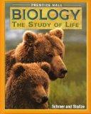 Biology: Study of Life
