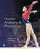 Human Anatomy & Physiology Plus Mastering A&P with Pearson eText -- Access Card Package (11t...