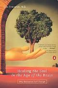 Healing the Soul in the Age of the Brain Why Medication Isn't Enough