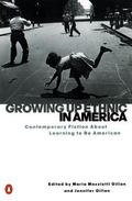 Growing Up Ethnic in America Contemporary Fiction About Learning to Be American