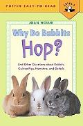 Why Do Rabbits Hop? And Other Questions About Rabbits, Guinea Pigs, Hamsters, and Gerbils