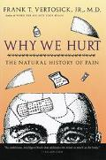 Why We Hurt The Natural History of Pain