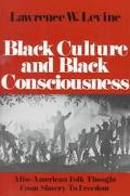 Black Culture and Black Consciousness Afro-American Folk Thought from Slavery to Freedom