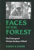 Faces in the Forest The Endangered Muriqui Monkeys of Brazil