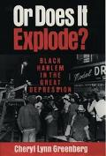 Or Does It Explode? Black Harlem in the Great Depression
