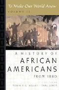 To Make Our World Anew A History of African Americans Since 1880