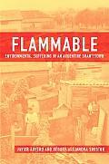 Flammable: Environmental Suffering in an Argentine Shantytown