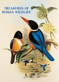 Treasures of Indian Wildlife
