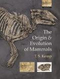 Origin And Evolution Of Mammals