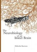 Neurobiology of an Insect Brain - Malcolm Burrows - Hardcover