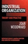 Industrial Organization Theory and Practice
