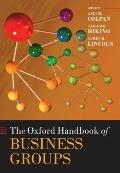 The Oxford Handbook of Business Groups (Oxford Handbooks in Business & Management)