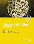 Animal Cell Culture A Practical Approach