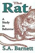 Rat A Study in Behavior
