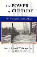 Power of Culture Critical Essays in American History