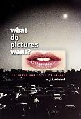 What Do Pictures Want? The Lives And Loves Of Images