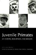 Juvenile Primates Life History, Development, and Behavior