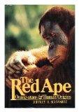 Red Ape Orangutans and Human Origins