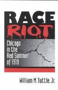 Race Riot Chicago in the Red Summer of 1919