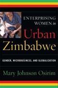 Enterprising Women in Urban Zimbabwe: Gender, Microbusiness, and Globalization