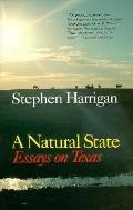 Natural State Essays on Texas