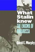 What Stalin Knew The Enigma Of Barbarossa