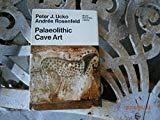 Palaeolithic Cave Art (World University Library)